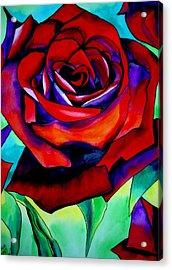 Red Rose Macro 2 Acrylic Print by Sacha Grossel