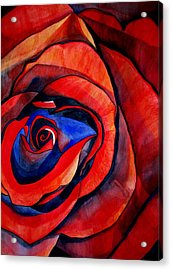 Red Rose Macro Acrylic Print by Sacha Grossel