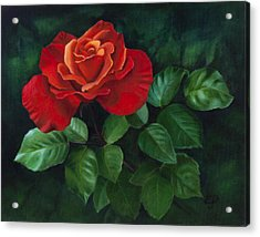 Red Rose - Oil Painting On Canvas Acrylic Print