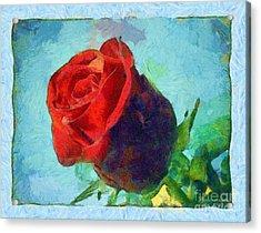 Red Rose On Blue Acrylic Print by Dana Hermanova