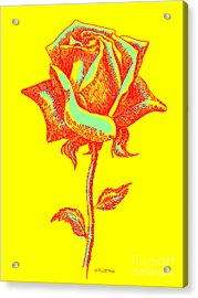 Red Rose Paintings 1 Acrylic Print by Gordon Punt