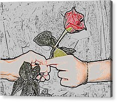 Red Rose Sketch By Jan Marvin Studios Acrylic Print