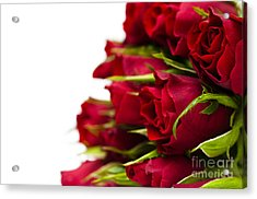Red Roses Acrylic Print by Anne Gilbert