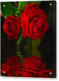 Red Roses Reflected Acrylic Print