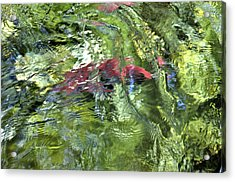 Acrylic Print featuring the photograph Red Salmon In Steep Creek by Cathy Mahnke