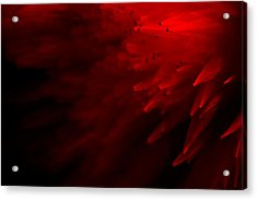 Red Skies Acrylic Print by Dazzle Zazz