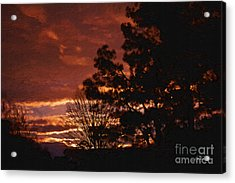 Red Sky At Night Acrylic Print by Cris Hayes