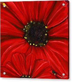 Red Spectacular- Red Gerbera Daisy Painting Acrylic Print by Lourry Legarde