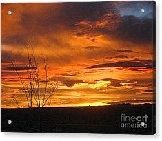 Red Sunrise Acrylic Print
