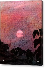 Red Sunset Acrylic Print by Dorothy Berry-Lound