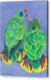 Red Tailed Amazon Parrots Acrylic Print by Anthony Purification