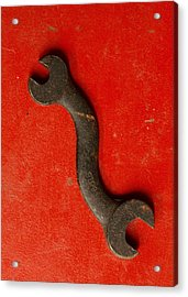 Red  Acrylic Print by Tom Druin