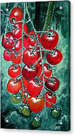 Red Tomatos Acrylic Print by Huy Lee