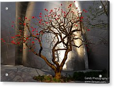 Acrylic Print featuring the photograph Red Tree  by Gandz Photography