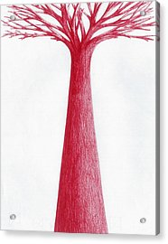 Acrylic Print featuring the drawing Red Tree by Giuseppe Epifani