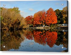 Red Trees Double Acrylic Print