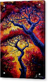 Red Trees Acrylic Print by Sebastian Pierre
