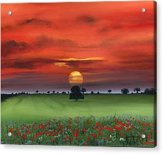 Red Tuscan Sunrise With Poppy Field Acrylic Print by Cecilia Brendel