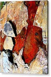 Red Veins Acrylic Print