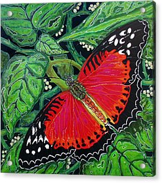 Acrylic Print featuring the painting Red Butterfly by Debbie Chamberlin