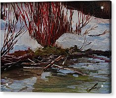 Red Willows Acrylic Print by Suzanne Tynes