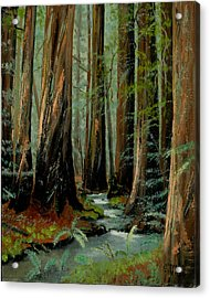 Redwood Forest Stream Acrylic Print by Cecilia Brendel