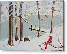Redbird Winter Acrylic Print by Harold Greer