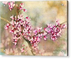 Welcome Spring Acrylic Print