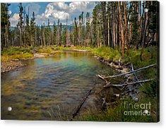 Redfish Lake Creek Acrylic Print by Robert Bales