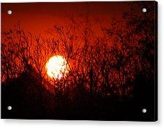 Redorange Sunset Acrylic Print by Matt Harang