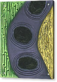 Reeds And Grass Acrylic Print