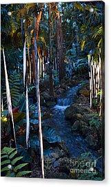 Reeds And Waterfall Acrylic Print