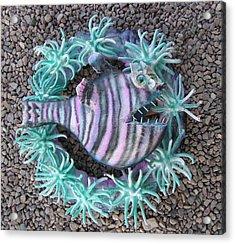 Reef Magic 2 Acrylic Print by Dan Townsend