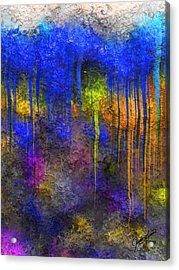 Reef Acrylic Print