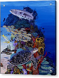 Reefs Edge Re0025 Acrylic Print by Carey Chen