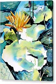 Reflected Magic Acrylic Print by Rae Andrews