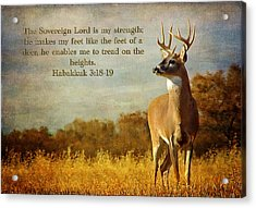 Reflecting His Glory Acrylic Print
