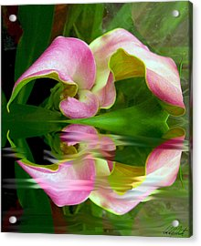 Reflecting Lily Acrylic Print