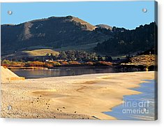 Acrylic Print featuring the photograph Reflecting The Setting Sun by Susan Wiedmann
