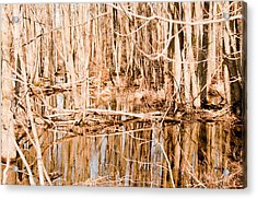 Reflection 2 Acrylic Print by BandC  Photography