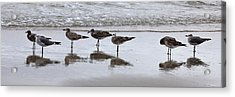 Reflection At The Beach Acrylic Print