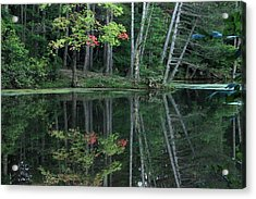 Acrylic Print featuring the photograph Reflection by Bruce Patrick Smith