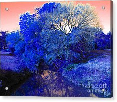 Reflection In Blue Acrylic Print