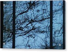 Reflection Acrylic Print by Joseph Yarbrough