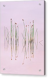 Reflection Of Serenity Acrylic Print