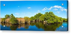 Reflection Of Trees In A Lake, Big Acrylic Print