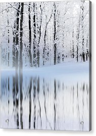 Reflection On A Dream Collingwood, On Acrylic Print