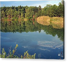 Acrylic Print featuring the photograph Reflection by Teresa Schomig