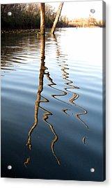 Reflections 2 Acrylic Print by Jamie Seul