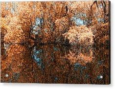 Reflections 2 Acrylic Print by Vessela Banzourkova